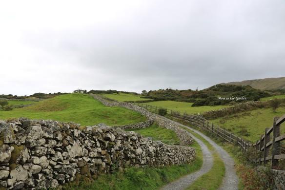 hike near Ashford Castle long wall