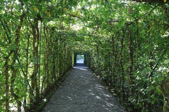 Ashford Castle green pathway