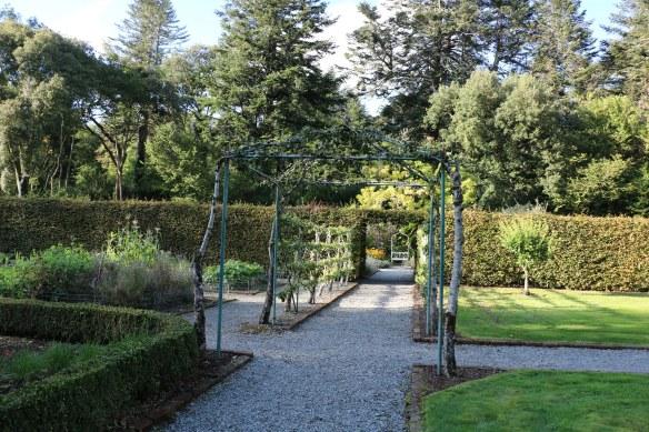kitchen garden at Ashford castle