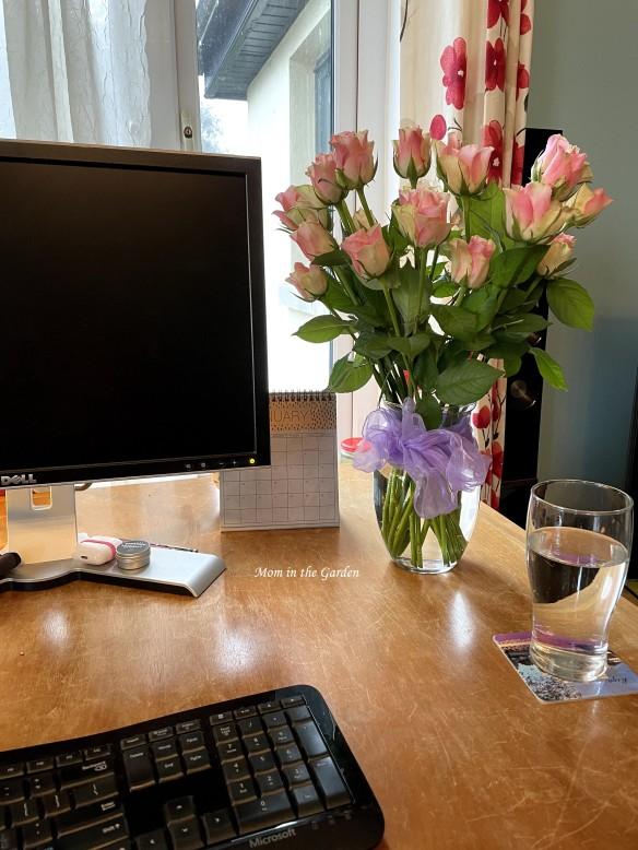 Lidl roses on desk