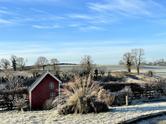 Sunny Frosty DAY view of playhouse
