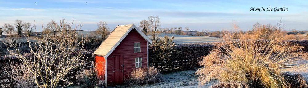 Winter scene of playhouse blue sky mid January