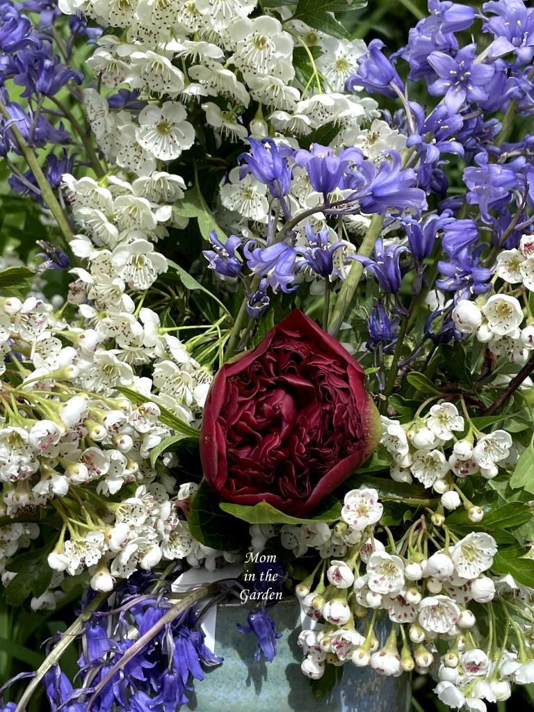 Close up peony hawthorn bluebell floral arrangement