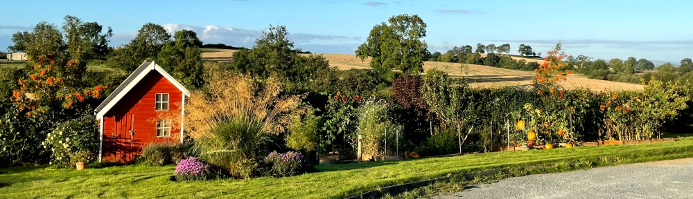 Fall view of the garden with blue sky